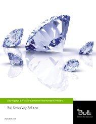 Environnement VMware - Bull