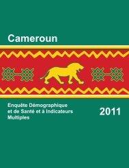 République du Cameroun Enquête Démographique ... - Measure DHS