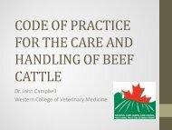 Beef Cattle Code of Practice - Saskatchewan Beef Conference