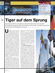 Fokus Tiger auf dem Sprung
