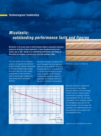 Micalastic: outstanding performance facts and figures - Voith Hydro