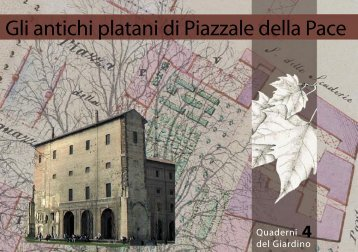 Platano di Maria Luigia - Clamer Informa