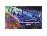 Cell responses to environment-- Signals