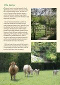 01403 732539 - Sumners Ponds - Page 5