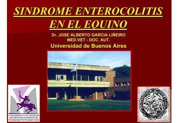 Diarrea en el Equino - Universidad de Buenos Aires