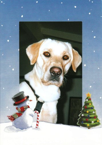The Bain Family - Labs4Rescue