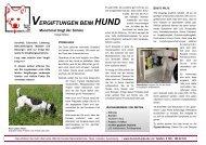 VERGIFTUNGEN BEIM HUND - Spanische Hunde