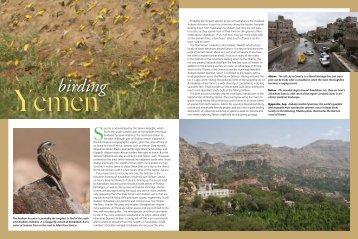 Birding Yemen