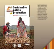 Sustainable Potato Production - Guidelines for - FAO.org