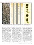 Dans le sillage des - Revista Pesquisa FAPESP - Page 4