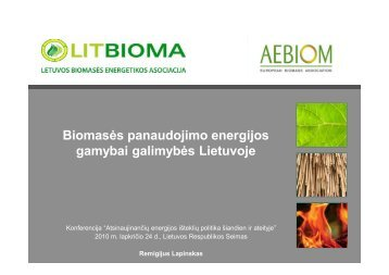 Biomasės panaudojimo energijos gamybai galimybės Lietuvoje.pdf