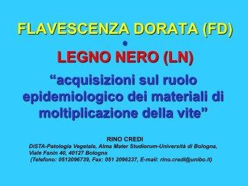 FLAVESCENZA DORATA (FD) e LEGNO NERO - Vitisrauscedo.com