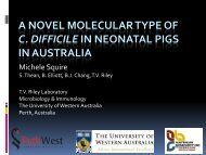Prevalence of C. difficile in piglets with and without diarrhoea in ...