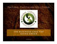 Business Sustainability Stories - Natural Capitalism Solutions