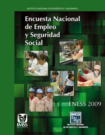 Encuesta Nacional de empleo y seguridad Social 2009. - Inegi