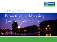 Proactively addressing consumer concerns - DNV Kema