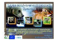 10.00 STANCIOIU - Large Carnivores and People in Romania