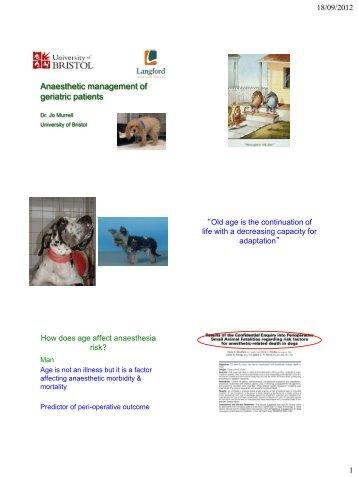 Sedation, Anaesthesia & Analgesia in Geriatric Cats