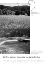 La Birse possède à nouveau une zone alluviale - Hintermann ...