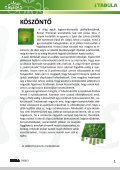 carcassonne kiegészítők - Tabula - Page 3