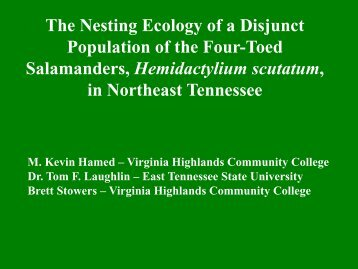The Nesting Ecology of a Disjunct Population of the Four-Toed ...