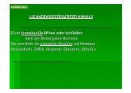 LIGANDENGESTEUERTER KANAL!! - Biochemie-trainings-camp.de