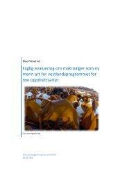 Faglig evaluering om makroalger som ny marin art ... - BluePlanet AS