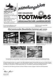 Alle kommunalen Bauarbeiten kommen gut voran - Todtmoos