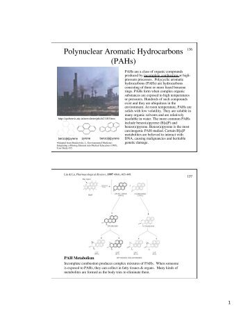 Polynuclear Aromatic Hydrocarbons (PAHs)