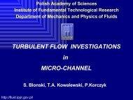 TURBULENT FLOW INVESTIGATIONS in MICRO ... - Fluid.ippt.pan.pl