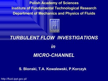 TURBULENT FLOW INVESTIGATIONS in MICRO ... - Fluid.ippt.pan.pl