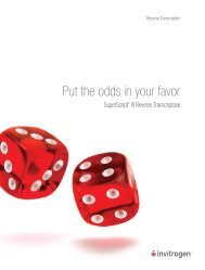 Put the odds in your favor