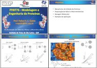 Modelagem Molecular - USP