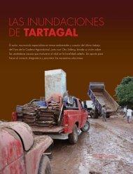 Descargar el informe en formato pdf - Fundación ProYungas