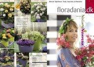 Floradania Magazin Nr. 54, 2009 Sommer - Floradania Marketing