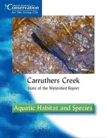 Carruthers Creek - Toronto and Region Conservation Authority