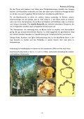 Visuelle Baumkontrolle - Seite 2