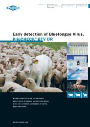 Early detection of bluetongue Virus. prioChECK® bTV dr - Prionics