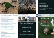 Flyer Bachelor - Biostudium.uni-wuerzburg.de - Universität Würzburg