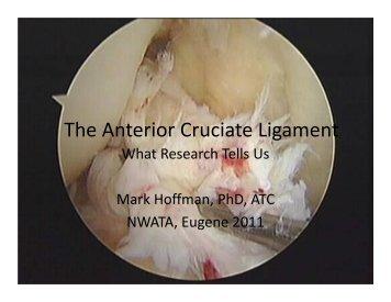The Anterior Cruciate Ligament - NWATA.org