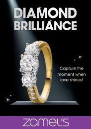 brilliance - Zamel's