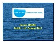 Success Story DOMRS (pdf) - Seventh EU Framework Programme ...