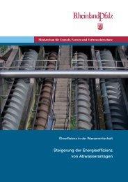Download, pdf-Format, ca. 1,5 MBytes - Universität Kaiserslautern