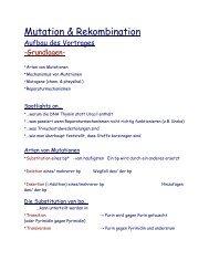Mutation & Rekombination