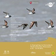 Zugvogeltage Norderland (download PDF-Dokument)