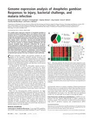 Genome expression analysis of Anopheles gambiae: Responses to ...