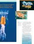Beneath the Surface - Saudi Aramco - Page 4