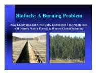 Biofuels: A Burning Problem - Global Justice Ecology Project