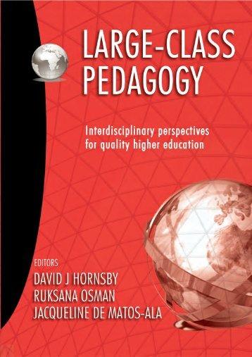 Large-Class Pedagogy extract