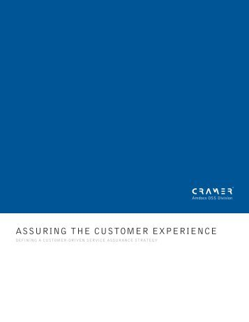 ASSURING THE CUSTOMER EXPERIENCE - Amdocs